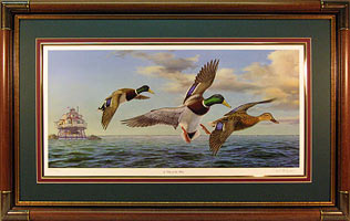 """A Day On The Bay"" by Wildlife Artist Randy McGovern"