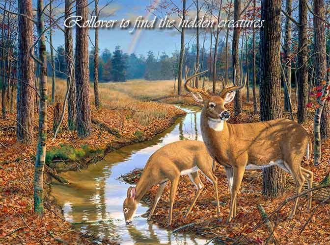 After the Rain - Whitetail Deer by Randy McGovern