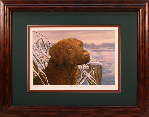 """Bay Buddy"" - Chesapeake Bay Retriever by wildlife artist Randy McGovern"