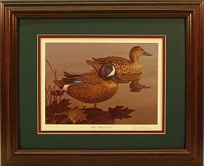 """Blue-winged Teal"" - Waterfowl Series by wildlife artist Randy McGovern"