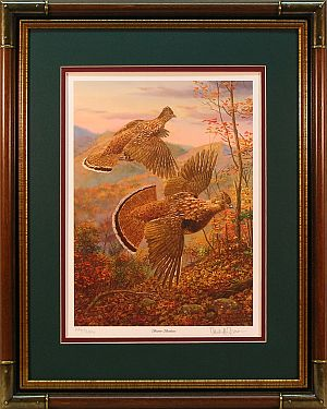 """Brown Bombers"" - Ruffed Grouse Prints by wildlife artist Randy McGovern"