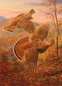 """Brown Bombers"" - Ruffed Grouse by wildlife artist Randy McGovern"