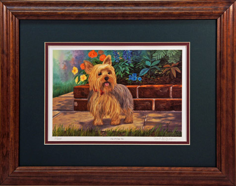 """Can I Come Too"" - Yorkie Print by artist Randy McGovern"