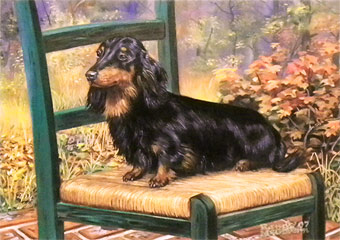 """Chairperson"" - Black and Tan Dachshund by Randy McGovern"