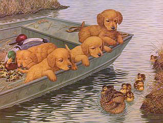 """Coming And Going"" - Golden Retrievers by McGovern"