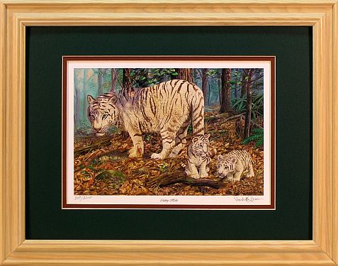 """Cubby Hole"" - White Tiger print by wildlife artist Randy McGovern"