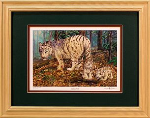 """Cubby Hole"" - White Tiger by wildlife artist Randy McGovern"