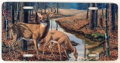 License Plate with art by wildlife artist Randy McGovern