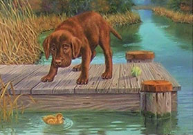 """Don't Make Me Jump"" - Chocolate Lab by Randy McGovern"