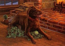 """Don't Make Me Move"" - Chocolate Lab by Randy McGovern"