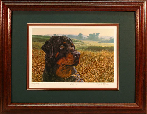 """Field Day"" - Rottweiler print by wildlife artist Randy McGovern"
