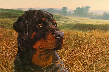 """Field Day"" by wildlife artist Randy McGovern"