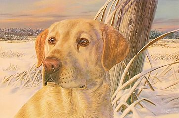 """Frozen Moment"" by wildlife artist Randy McGovern"