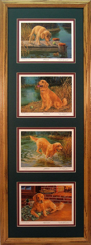 Framed set of 4 Golden Retriever prints by Randy McGovern