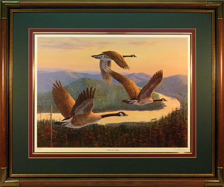 """High & Mighty"" - Canadian Geese Print by wildlife artist Randy McGovern"