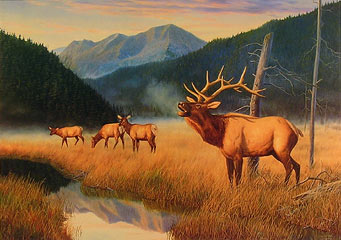 """King Of The Valley"" - Elk by wildlife artist Randy McGovern"