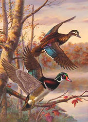 1997 Quail Unlimited Stamp design by Randy McGovern
