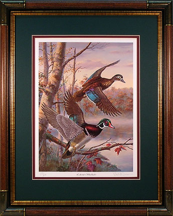 """Lakeside Wood Ducks"" - Wodd Ducks print by Randy McGovern"