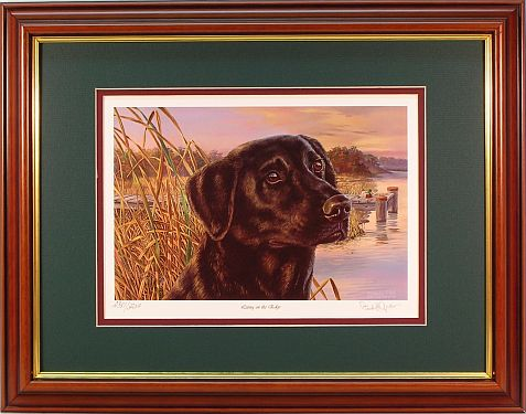 """Living on the Edge"" - Black Lab by wildlife artist Randy McGovern"