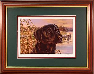 """Living On The Edge"" - Black Lab by artist Randy McGovern"