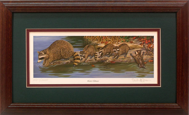 """Loose Caboose"" - Raccoon print by wildlife artist Randy McGovern"