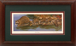 """Loose Caboose"" - Raccoons by wildlife artist Randy McGovern"