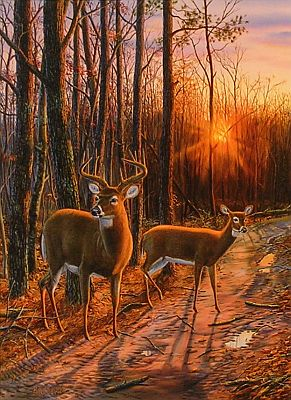 """On The Road Again"" by wildlife artist Randy McGovern"