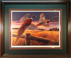 """Pheasants Over Grass"" - Ringneck Pheasants by wildlife artist Randy McGovern"