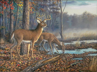"""Quiet Morning"" by wildlife artist Randy McGovern"