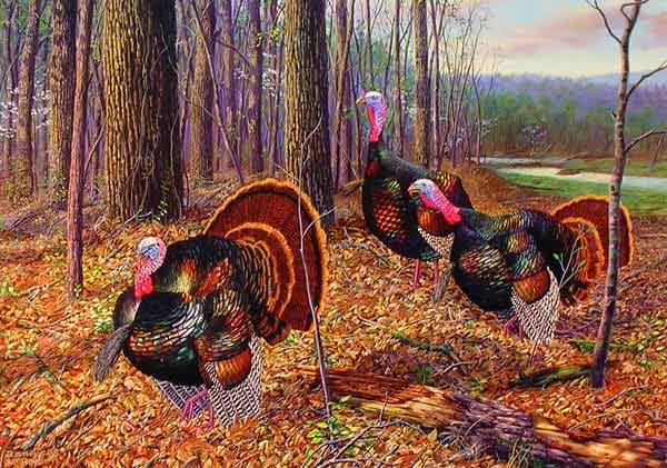 Riding The Coattails - Wild Turkeys by Randy McGovern