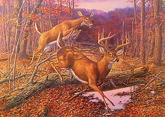 """Speed Bump"" by wildlife artist Randy McGovern"