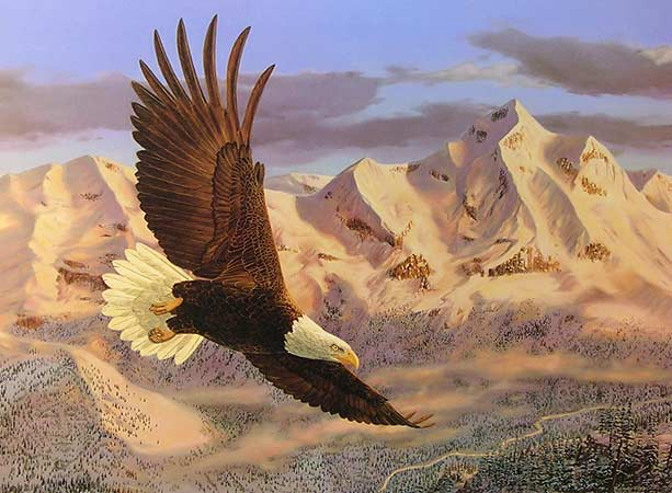 Limited Edition Prints of Birds by Wildlife Artist Randy McGovern
