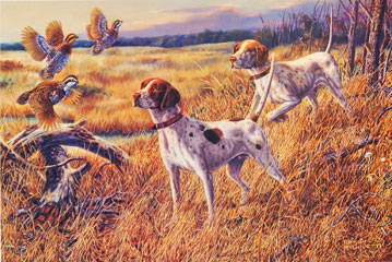 """""Uncoveyed"" - English Pointers by artist Randy McGovern"