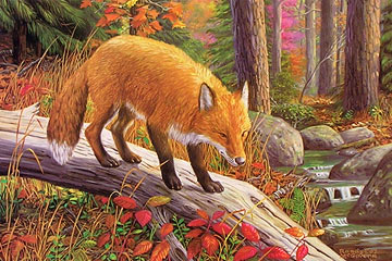"""Vantage Point"" - Red Fox by wildlife artist Randy McGovern"