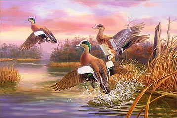 """Wings and Water"" - Widgeons by Randy McGovern"