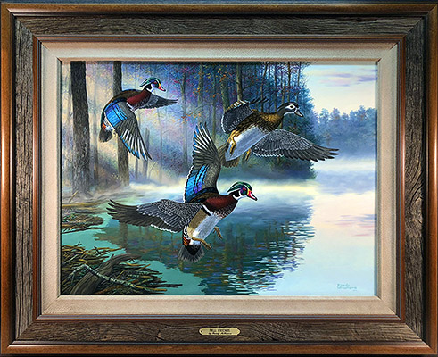 """Wood Duck Surprise"" by wildlife artist Randy McGovern"