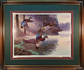 """Fly By"" - Wood Ducks by artist Randy McGovern"